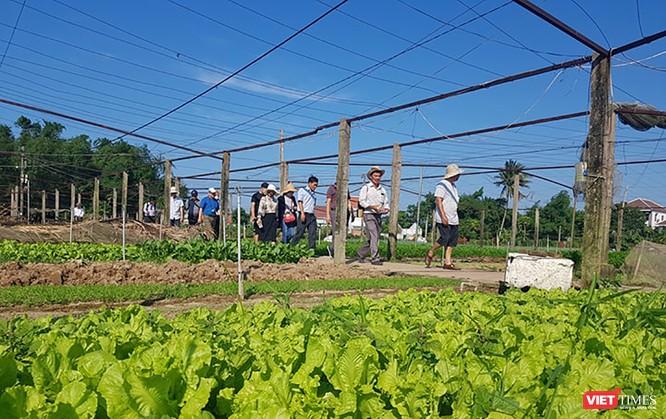 Du lịch gắn với nông nghiệp nông thôn nhiều tiềm năng, nhưng phát triển chưa xứng tầm ảnh 3