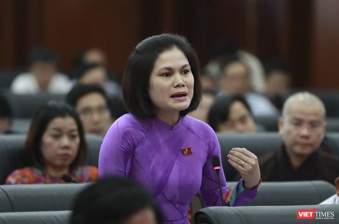 """Đại biểu Đà Nẵng nói gì về """"thành phố đáng sống""""? ảnh 2"""