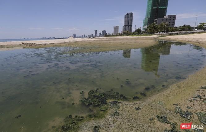 """Bãi biển Đà Nẵng """"ngộ độc"""" nước thải thế nào - Kỳ 1 ảnh 5"""