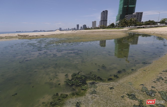 """Lần đầu tiên """"đăng đàn"""", tân Giám đốc Sở TNMT Đà Nẵng nói sẽ làm gì để cứu bãi biển, khắc phục ô nhiễm? ảnh 2"""