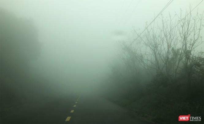 """Du khách hứng thú ngắm """"sông mây"""" trên đỉnh Sơn Trà ảnh 11"""