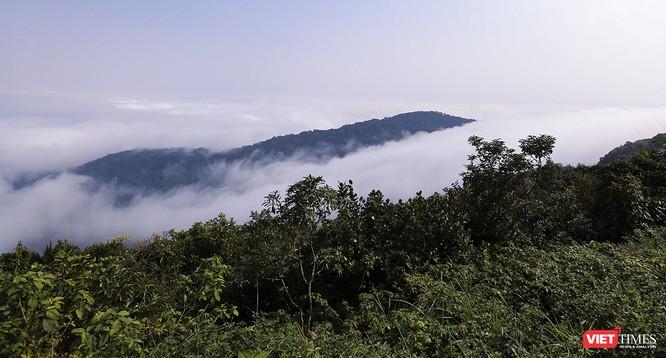 """Du khách hứng thú ngắm """"sông mây"""" trên đỉnh Sơn Trà ảnh 1"""