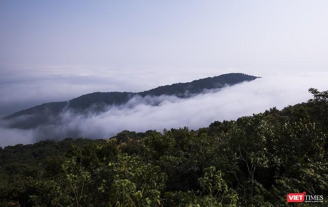 """Du khách hứng thú ngắm """"sông mây"""" trên đỉnh Sơn Trà ảnh 3"""