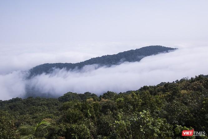 """Du khách hứng thú ngắm """"sông mây"""" trên đỉnh Sơn Trà ảnh 4"""