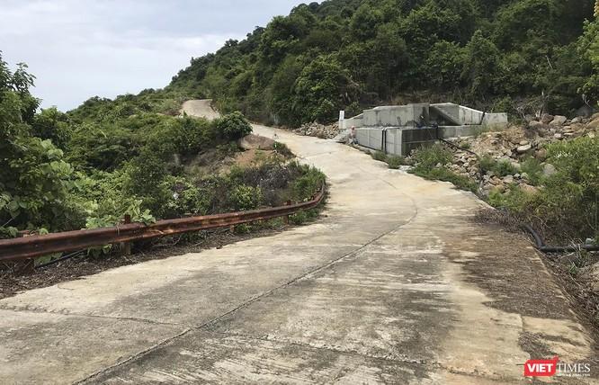 Đà Nẵng: Xem xét cấm xe máy tay ga lưu thông lên bán đảo Sơn Trà ảnh 1