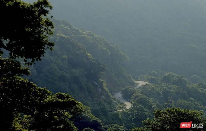 Đà Nẵng: Sẽ cấm xe máy, xe tay ga trên một số tuyến đường lên bán đảo Sơn Trà ảnh 2