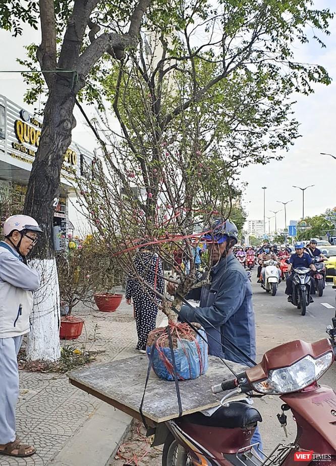 Ảnh: Rộn ràng chợ hoa xuân Đà Nẵng ảnh 12