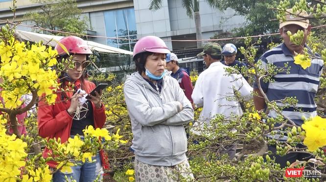Ảnh: Rộn ràng chợ hoa xuân Đà Nẵng ảnh 16