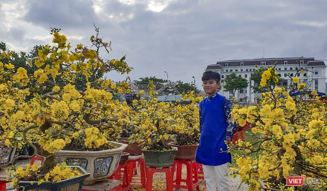 Ảnh: Rộn ràng chợ hoa xuân Đà Nẵng ảnh 2