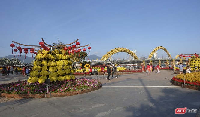 Đà Nẵng: Đến đường hoa Bạch Đằng, thấy Tết Canh Tý đang về rất gần ảnh 8