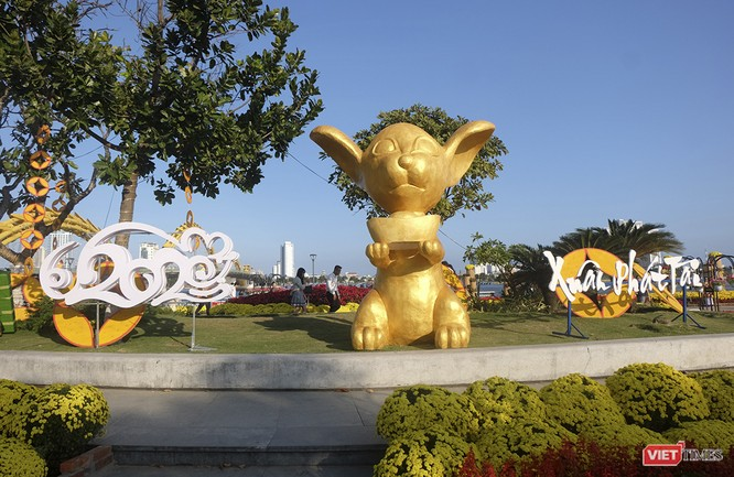 Đà Nẵng: Đến đường hoa Bạch Đằng, thấy Tết Canh Tý đang về rất gần ảnh 11