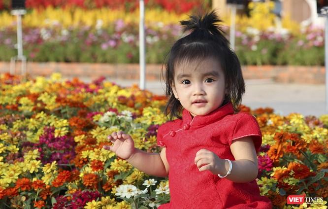 Đà Nẵng: Đến đường hoa Bạch Đằng, thấy Tết Canh Tý đang về rất gần ảnh 15