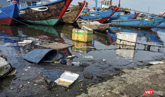 Đà Nẵng dùng camera để giám sát xả thải tại âu thuyền Thọ Quang ảnh 1