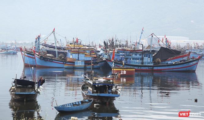 Ứng phó siêu bão số 9, Đà Nẵng tuyên bố xử lý hình sự người chống đối lệnh giới nghiêm ảnh 10