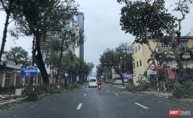 """Đà Nẵng như bãi chiến trường sau trận """"càn quét"""" của siêu bão số 9 ảnh 8"""