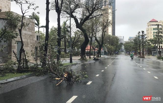 Một Đà Nẵng tan hoang đến khó tin sau siêu bão... ảnh 17