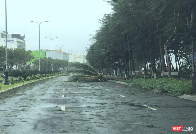 Một Đà Nẵng tan hoang đến khó tin sau siêu bão... ảnh 18