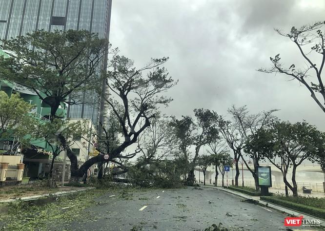 Một Đà Nẵng tan hoang đến khó tin sau siêu bão... ảnh 21