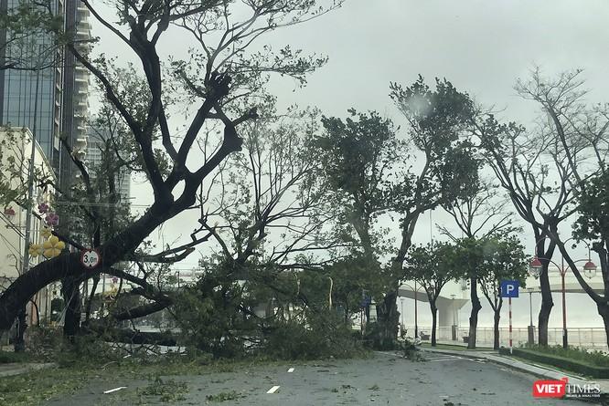 Một Đà Nẵng tan hoang đến khó tin sau siêu bão... ảnh 22