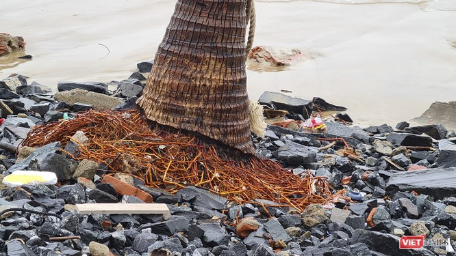 Đà Nẵng ngổn ngang sau khi bão số 13 lướt qua ảnh 3