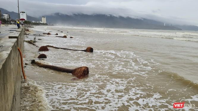 Đà Nẵng ngổn ngang sau khi bão số 13 lướt qua ảnh 2