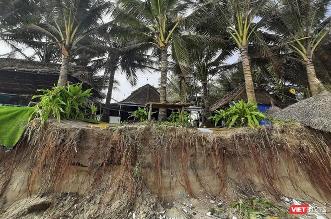 Hậu bão số 13, bãi biển du lịch An Bàng (Hội An) tan hoang ảnh 9