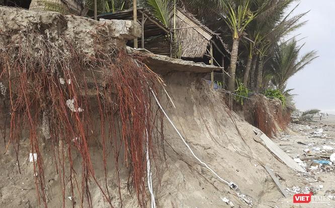 Hậu bão số 13, bãi biển du lịch An Bàng (Hội An) tan hoang ảnh 15