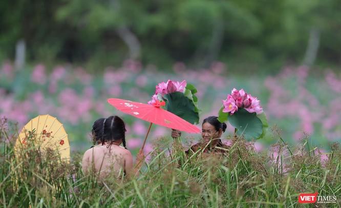 Ảnh: Vẻ đẹp khó cưỡng của đầm sen lớn Trà Lý ở Quảng Nam ảnh 15