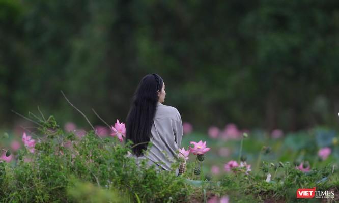 Ảnh: Vẻ đẹp khó cưỡng của đầm sen lớn Trà Lý ở Quảng Nam ảnh 27