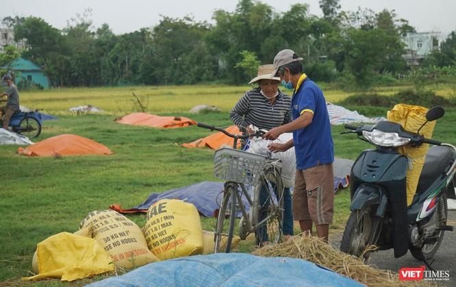 Ảnh: Người dân Đà Nẵng căng mình ứng phó với bão số 5 ảnh 20