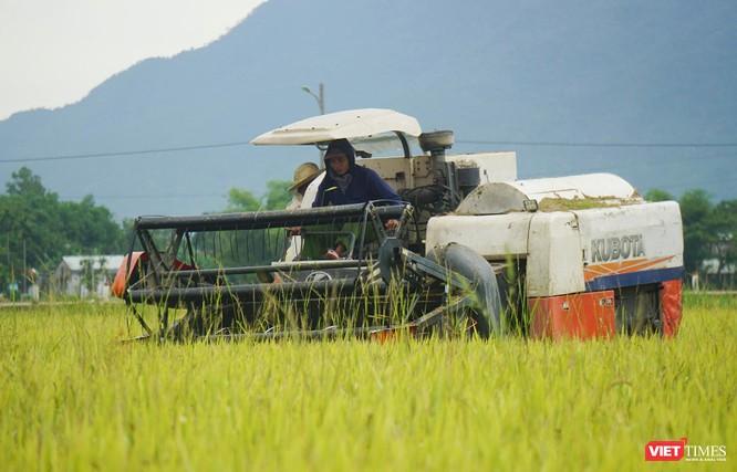 Ảnh: Người dân Đà Nẵng căng mình ứng phó với bão số 5 ảnh 19