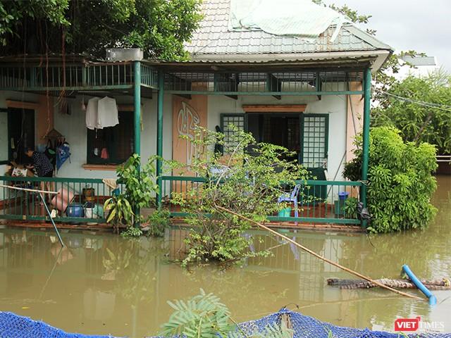 Người Sài Gòn trấn tĩnh sau bão lớn ảnh 1