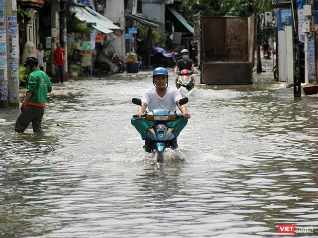 Người Sài Gòn trấn tĩnh sau bão lớn ảnh 5
