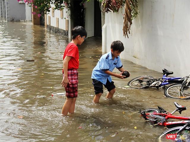 Người Sài Gòn trấn tĩnh sau bão lớn ảnh 6