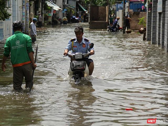 Người Sài Gòn trấn tĩnh sau bão lớn ảnh 8