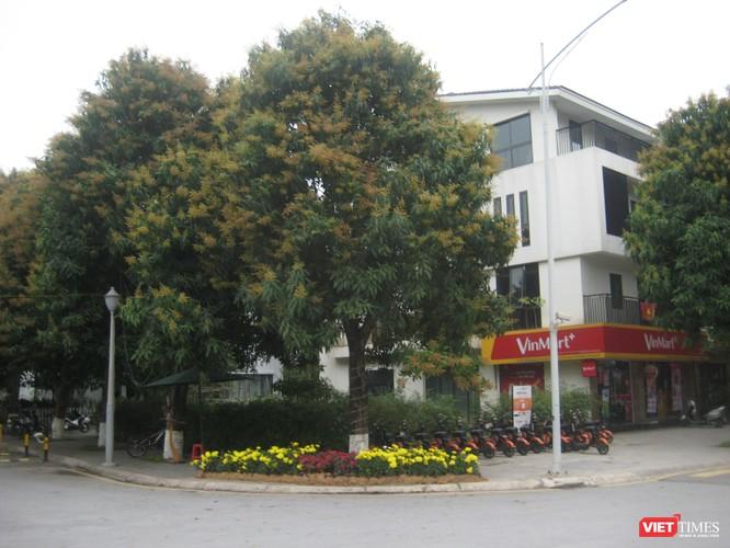 Cây xanh đô thị tại Việt Nam đang thiếu nguồn nhân lực trình độ cao ảnh 2