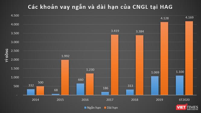 """Chăn nuôi Gia Lai âm vốn 5.300 tỷ đồng: """"Khoảng tối"""" của HAG? ảnh 1"""