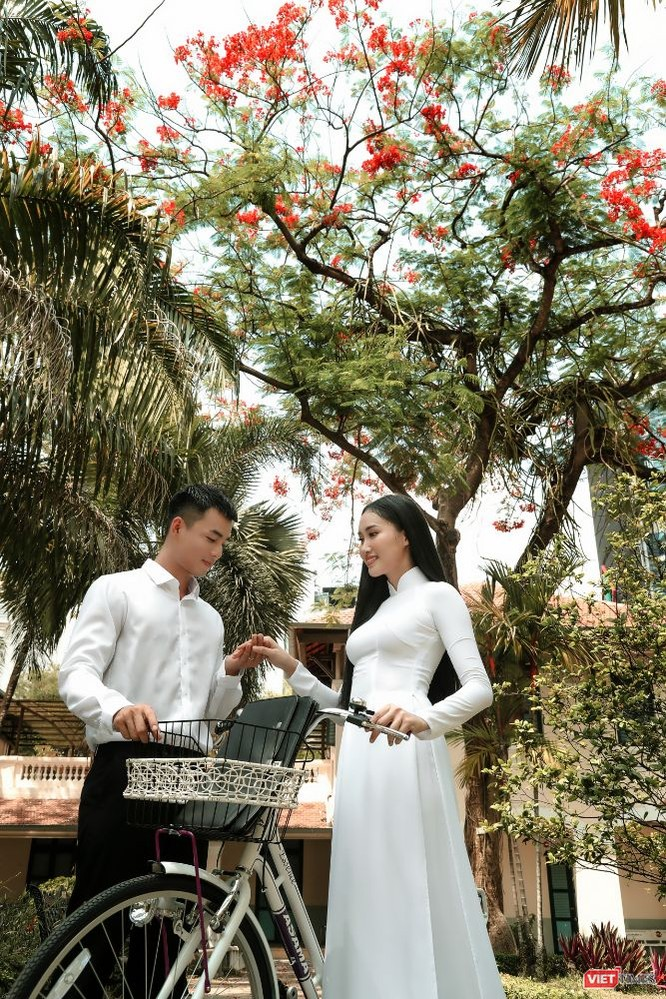 Áo trắng chào hè, tháng 5 sân trường rực màu hoa phượng ảnh 5
