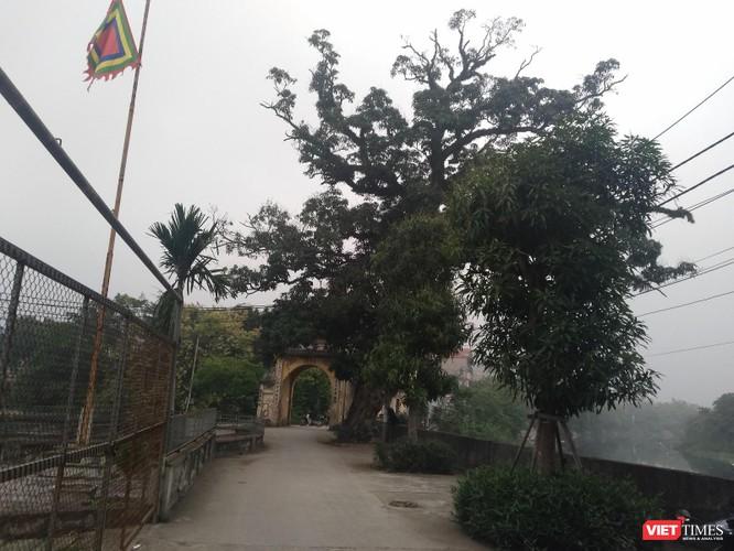 Ngôi làng nhà giàu ngàn năm tuổi bên dòng Nhuệ Giang ảnh 1