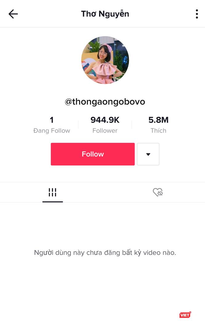 Cơ quan chức năng mời YouTuber Thơ Nguyễn đến làm việc ảnh 1