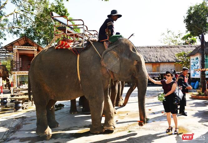 Rước dâu trên lưng voi qua hồ Lắk ảnh 10