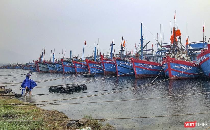 Bão số 5 cận kề, Đà Nẵng khẩn trương đưa tàu thuyền lên bờ tránh trú ảnh 4