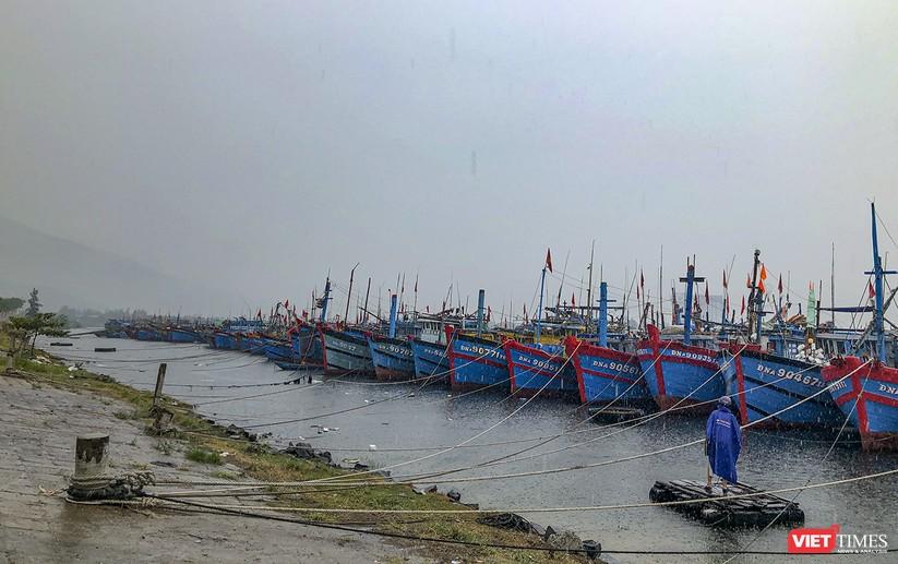 Bão số 5 cận kề, Đà Nẵng khẩn trương đưa tàu thuyền lên bờ tránh trú ảnh 6