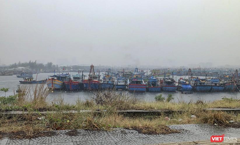 Bão số 5 cận kề, Đà Nẵng khẩn trương đưa tàu thuyền lên bờ tránh trú ảnh 3