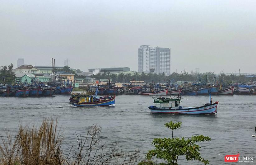Bão số 5 cận kề, Đà Nẵng khẩn trương đưa tàu thuyền lên bờ tránh trú ảnh 2