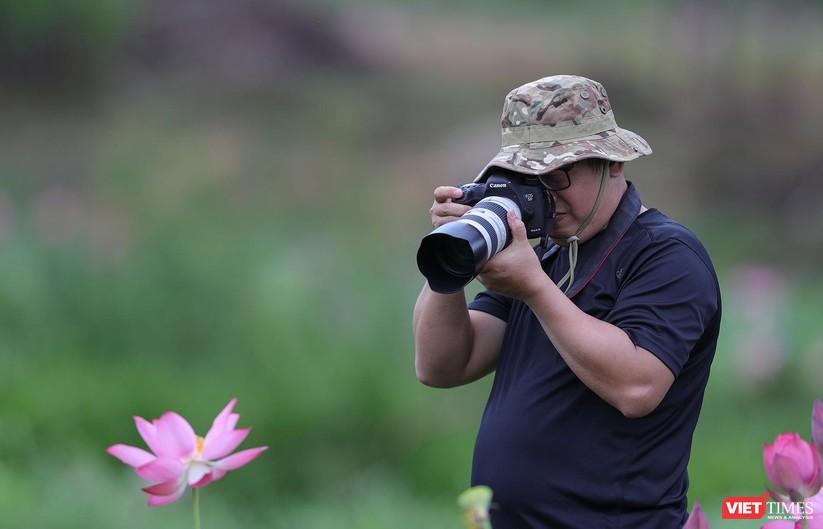 Ảnh: Vẻ đẹp khó cưỡng của đầm sen lớn Trà Lý ở Quảng Nam ảnh 23
