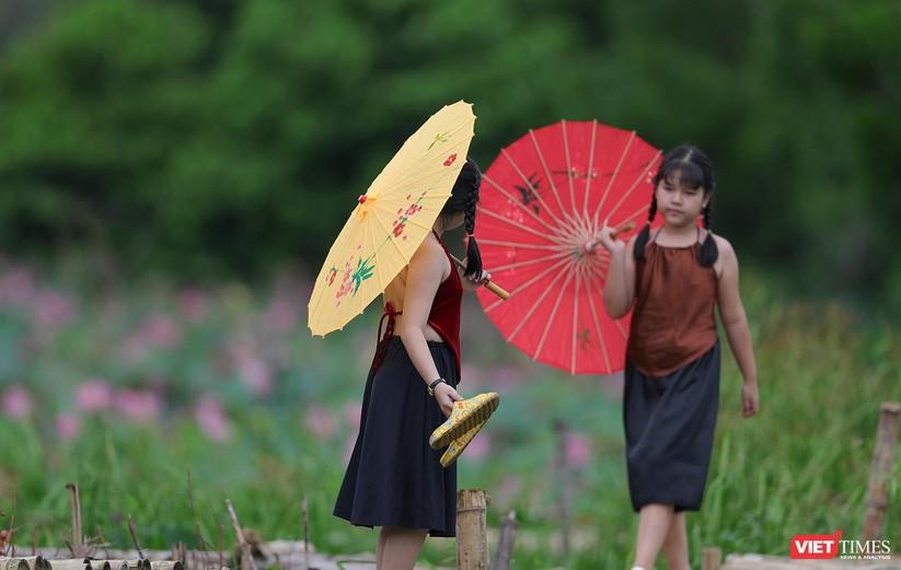 Ảnh: Vẻ đẹp khó cưỡng của đầm sen lớn Trà Lý ở Quảng Nam ảnh 19
