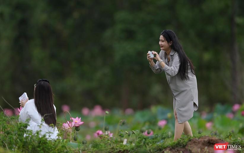 Ảnh: Vẻ đẹp khó cưỡng của đầm sen lớn Trà Lý ở Quảng Nam ảnh 12