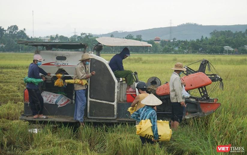 Ảnh: Người dân Đà Nẵng căng mình ứng phó với bão số 5 ảnh 18