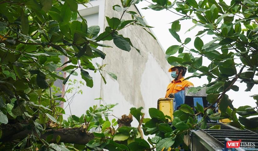 Ảnh: Người dân Đà Nẵng căng mình ứng phó với bão số 5 ảnh 16